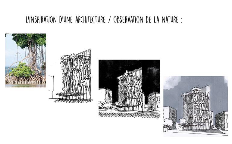 Inspiration d'une architecture.